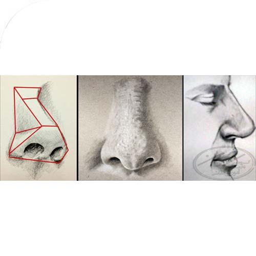 ترسیم مرحله به مرحله بینی همراه با رعایت اصول طراحی چهره